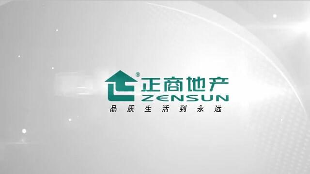 洛阳正商城宣传片