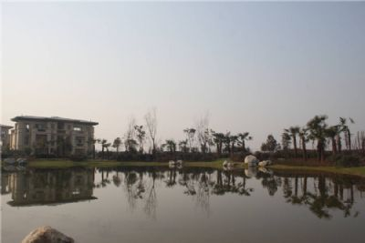 景观图(3)