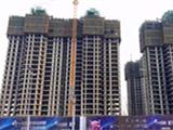 建业华阳峰渡3月项目进度