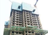 建业贰号城邦3月项目进度